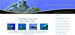 Sea Turtle Facts and Information