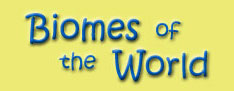 Biome of the world