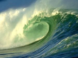 ocean_biome_400