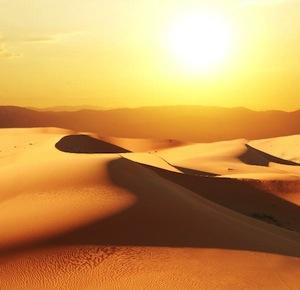 Desert video feature