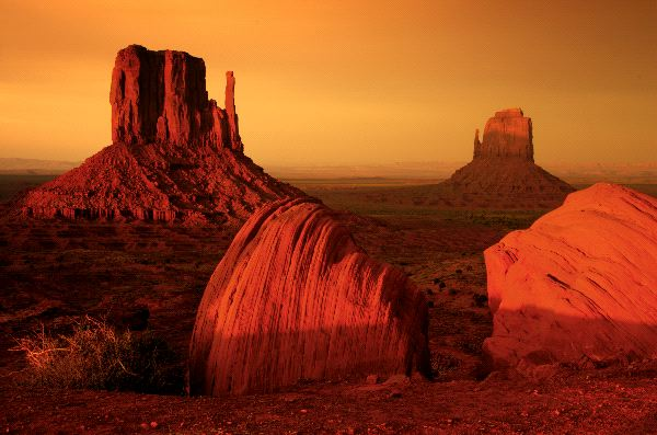 Desert Biome Landscape Animal Facts And Information