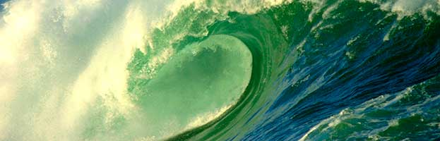 Ocean Biome